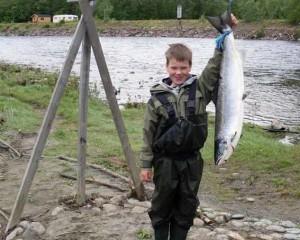 Ung laksefisker